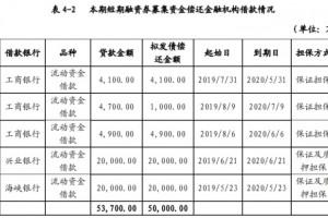 福建阳光集团拟发行5亿元短期融资券用于偿还金融机构告贷