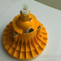 BAD808系列LED防爆灯 防爆灯性能 防爆投光灯产品  BAD808系列LED防爆灯   防爆投光灯